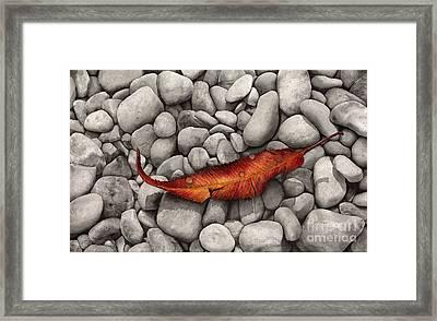 Autumn Epilogue Framed Print by Hailey E Herrera