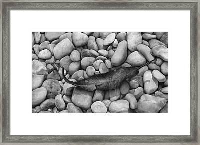 Autumn Epilogue On Black Framed Print by Hailey E Herrera