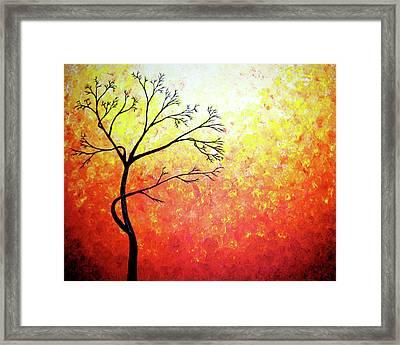 Autumn Evening Framed Print by Daniel Lafferty