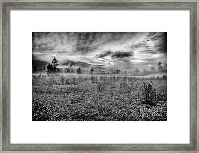 Autumn Fall Colors 10 Bw Framed Print