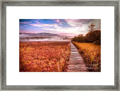 Autumn Fall Colors 4 Ap Framed Print by Dan Carmichael