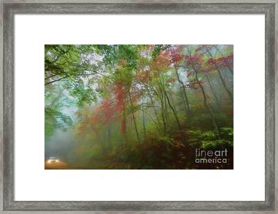 Autumn Fall Colors - A Foggy Drive Through Paradise Ap Framed Print