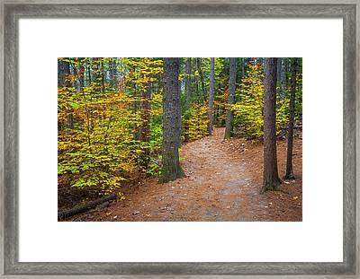 Framed Print featuring the photograph Autumn Fall Foliage In New England by Ranjay Mitra