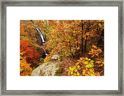 Autumn Falls Framed Print by Evgeni Dinev