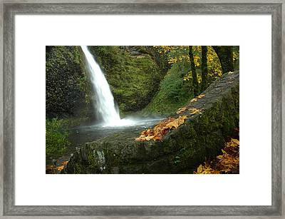 Framed Print featuring the photograph Autumn Falls by Lori Mellen-Pagliaro