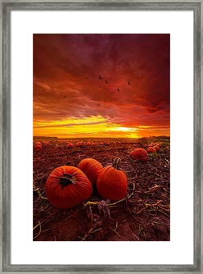 Autumn Falls Framed Print by Phil Koch