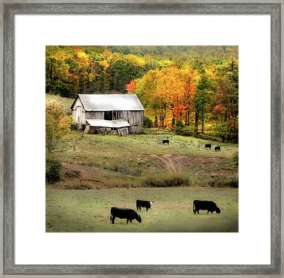 Autumn Farmhouse Framed Print