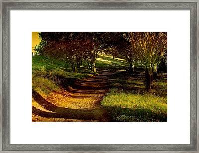 Autumn Feel Framed Print