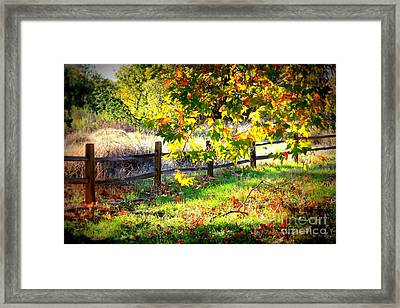 Autumn Fence Framed Print by Carol Groenen