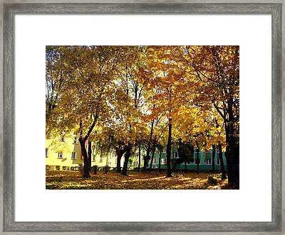 Autumn Festival Of Colors Framed Print