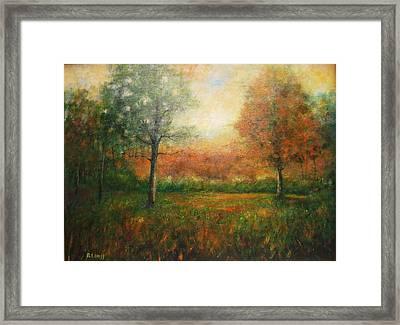 Autumn Field Framed Print by Robert  Hess