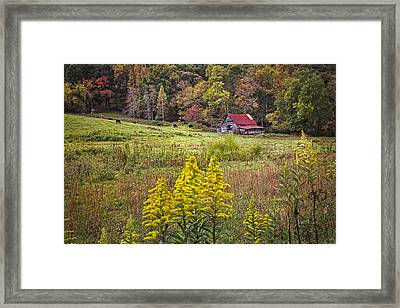 Autumn Fields Framed Print by Debra and Dave Vanderlaan