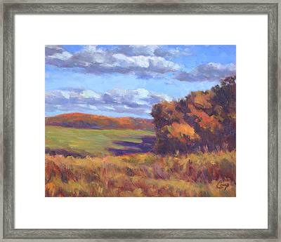 Autumn Fields Framed Print by Michael Camp