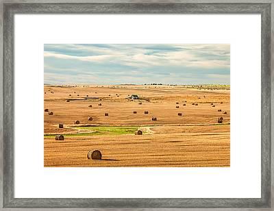 Autumn Fields Framed Print