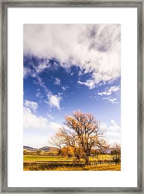 Autumn Fires Framed Print by Jorgo Photography - Wall Art Gallery