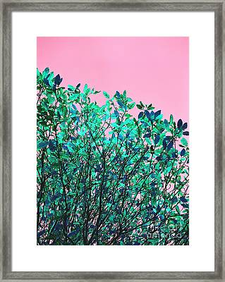 Autumn Flames - Pink Framed Print