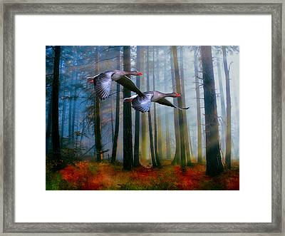 Framed Print featuring the photograph Autumn Flight by Diane Schuster