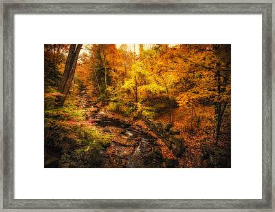 Framed Print featuring the photograph Autumn Flow by Robert Clifford