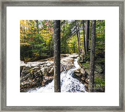 Framed Print featuring the photograph Autumn Flows by Anthony Baatz