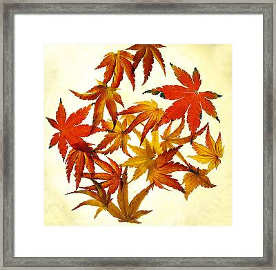 Autumn Flury Framed Print by Rebecca Cozart