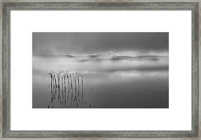 Framed Print featuring the photograph Autumn Fog Black And White by Bill Wakeley