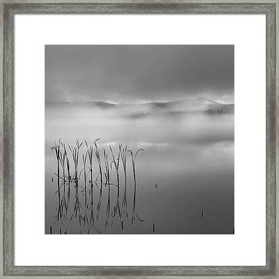 Framed Print featuring the photograph Autumn Fog Black And White Square by Bill Wakeley