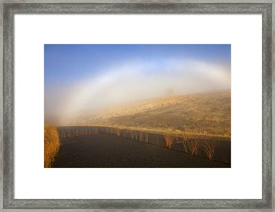 Autumn Fog Bow Framed Print