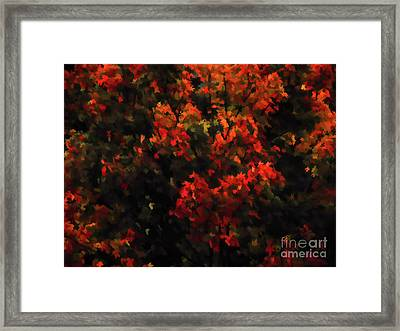 Autumn Foliage 5 Framed Print