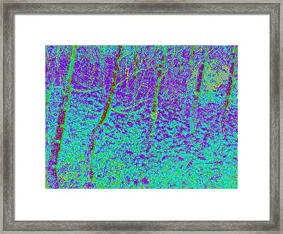 Autumn Foliage D4 Framed Print by Modified Image