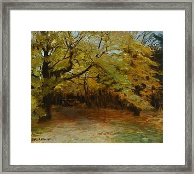 Autumn Forest At Skagen Framed Print by Celestial Images