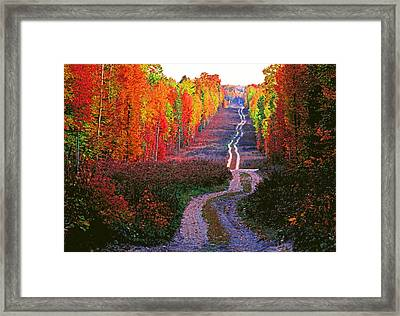 Autumn Forest Track Framed Print by Dennis Cox WorldViews