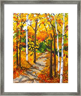 Autumn Forest Trail Framed Print