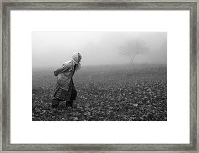 Autumn Framed Print by Fproject - Przemyslaw Kruk