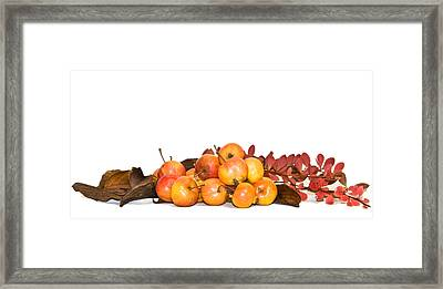 Autumn Friuts And Leaves Framed Print by Svetlana Sewell