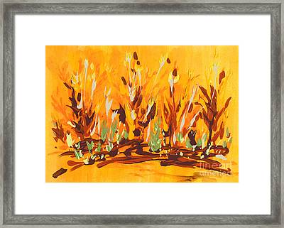 Autumn Garden Framed Print