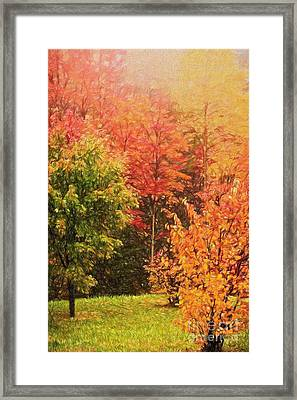 Autumn Gathering Ap Framed Print by Dan Carmichael