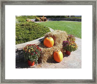 Framed Print featuring the photograph Autumn Gifts Harvest Time  by Irina Sztukowski