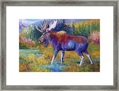 Autumn Glimpse Framed Print