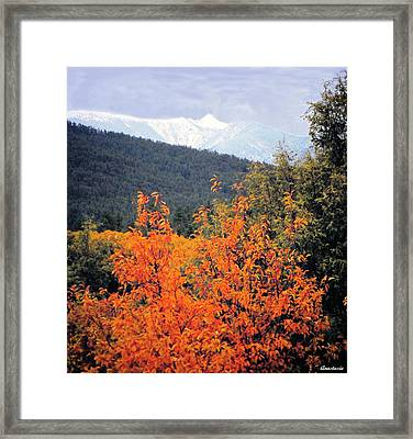 Autumn Glory And Mountain Cathedral Framed Print by Anastasia Savage Ealy