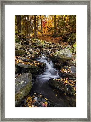 Autumn Glory At Bushkill Falls State Park Pennsylvania Usa Framed Print by Vishwanath Bhat