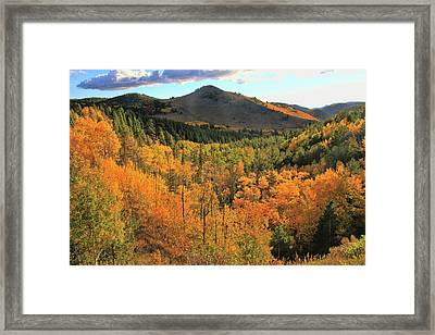 Autumn Glory On Peak To Peak Highway Framed Print by Dan Sproul