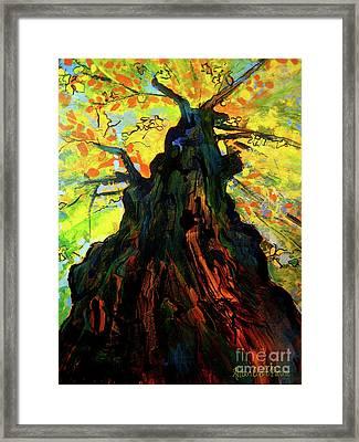 Autumn Glow Framed Print by Allison Coelho Picone