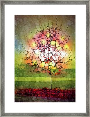 Autumn Glow At The Lake Framed Print