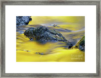 Autumn Glow Framed Print by Colin Woods
