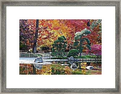Autumn Glow In Manito Park Framed Print by Carol Groenen