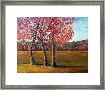 Autumn Glow Framed Print by Tami Booher