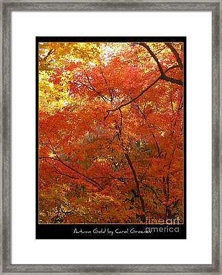 Autumn Gold Poster Framed Print by Carol Groenen