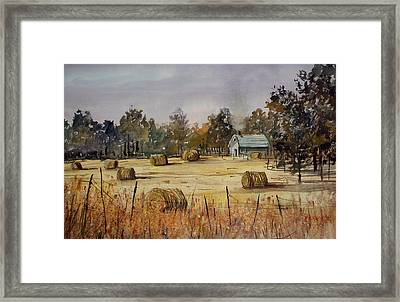 Autumn Gold Framed Print by Ryan Radke