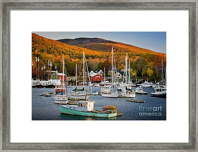 Autumn Gold Framed Print by Susan Cole Kelly