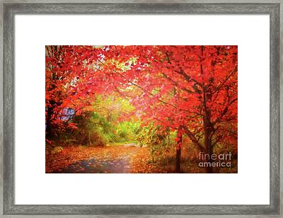 Glorious Foliage On The Rail Trail Framed Print